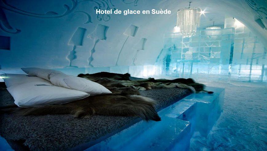 31 Etonnants Icebergs, Newfoundland