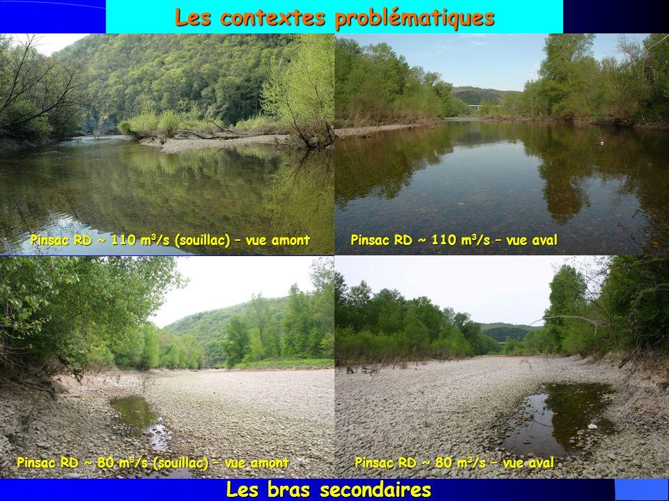 Les contextes problématiques Les bras secondaires Pinsac RD ~ 110 m 3 /s (souillac) – vue amont Pinsac RD ~ 110 m 3 /s – vue aval Pinsac RD ~ 80 m 3 /s (souillac) – vue amont Pinsac RD ~ 80 m 3 /s – vue aval