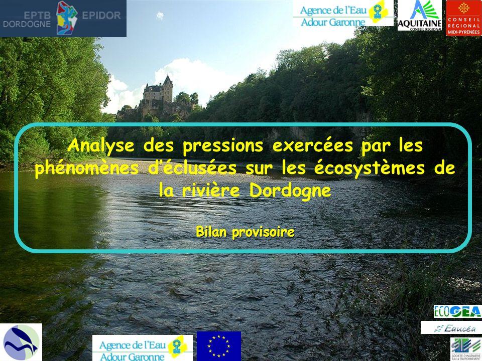 Analyse des pressions exercées par les phénomènes déclusées sur les écosystèmes de la rivière Dordogne Bilan provisoire
