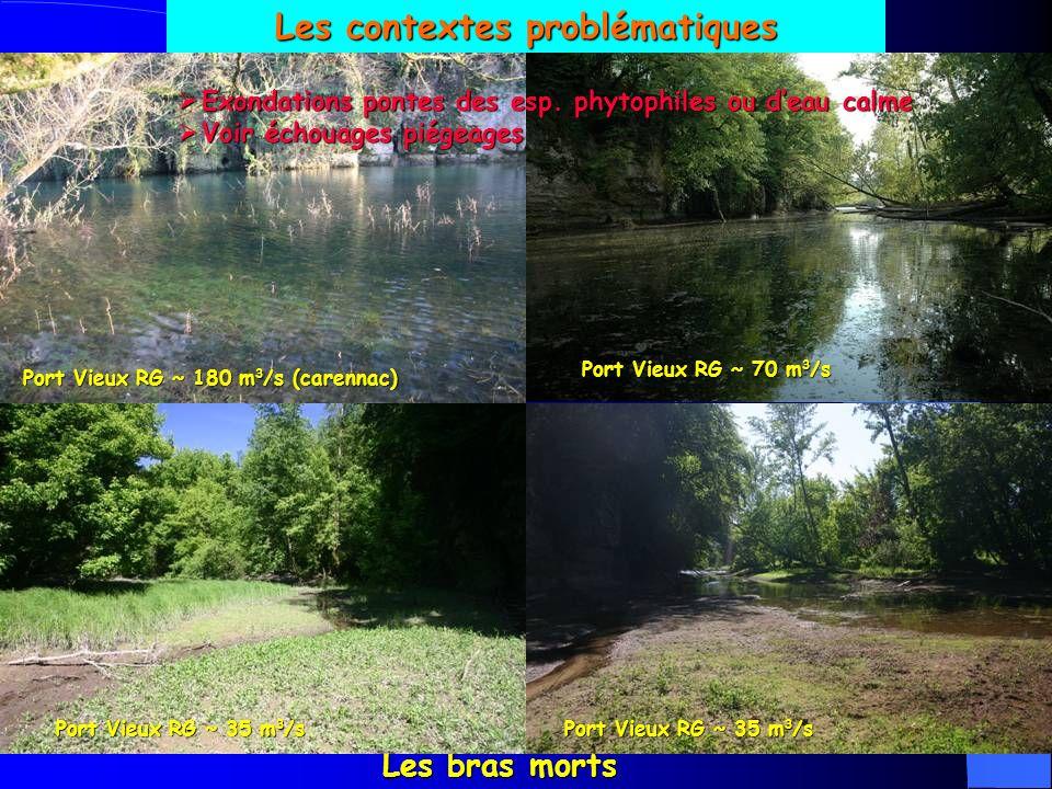 Les contextes problématiques Les bras morts Port Vieux RG ~ 180 m 3 /s (carennac) Port Vieux RG ~ 35 m 3 /s Port Vieux RG ~ 70 m 3 /s Port Vieux RG ~ 35 m 3 /s Exondations pontes des esp.