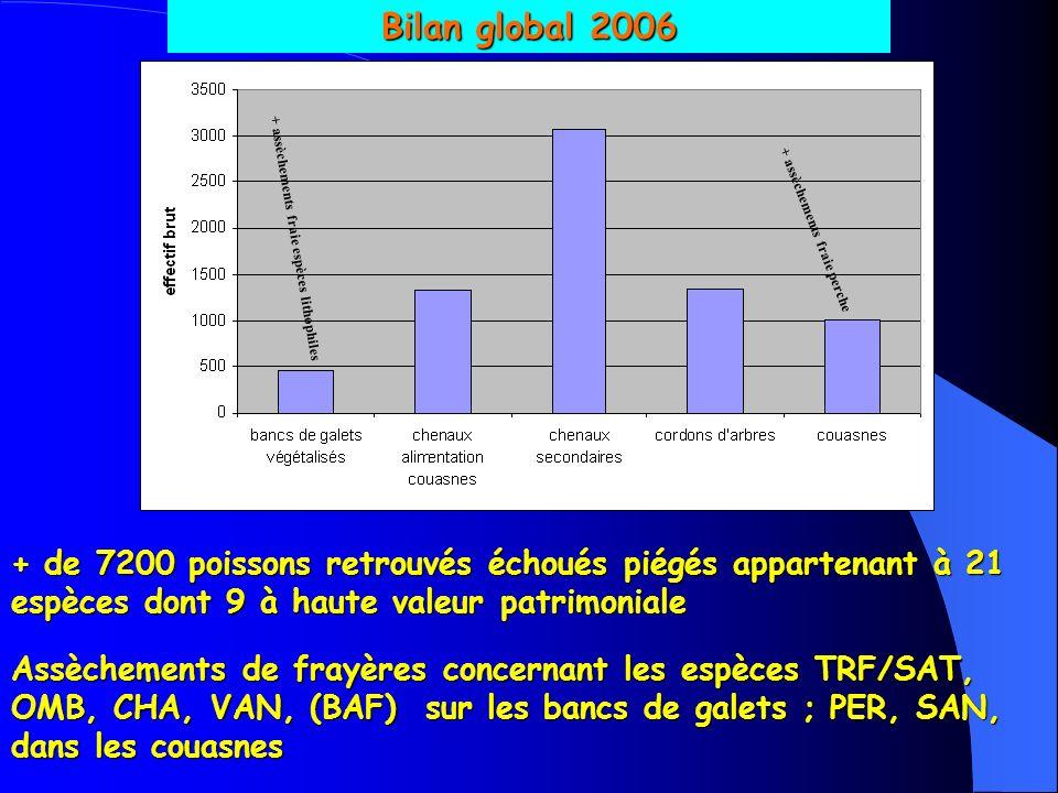 Bilan global 2006 + assèchements fraie espèces lithophiles + assèchements fraie perche + de 7200 poissons retrouvés échoués piégés appartenant à 21 espèces dont 9 à haute valeur patrimoniale Assèchements de frayères concernant les espèces TRF/SAT, OMB, CHA, VAN, (BAF) sur les bancs de galets ; PER, SAN, dans les couasnes
