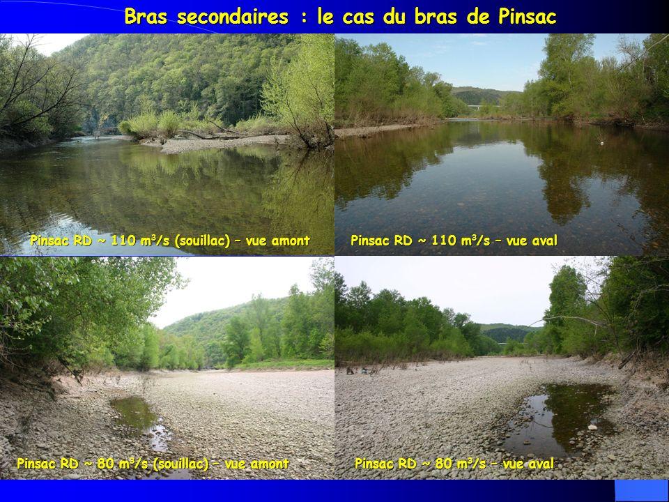 Bras secondaires : le cas du bras de Pinsac Pinsac RD ~ 110 m 3 /s (souillac) – vue amont Pinsac RD ~ 110 m 3 /s – vue aval Pinsac RD ~ 80 m 3 /s (souillac) – vue amont Pinsac RD ~ 80 m 3 /s – vue aval