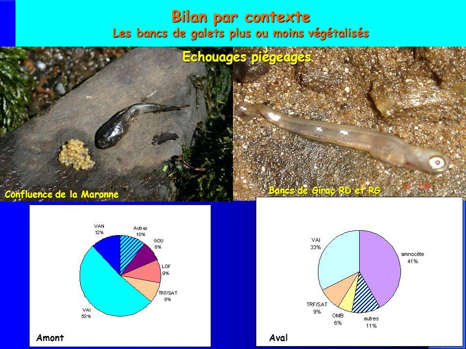 Bilan par contexte Les bancs de galets plus ou moins végétalisés Bancs de Girac RD et RG Confluence de la Maronne Echouages piégeages AmontAval