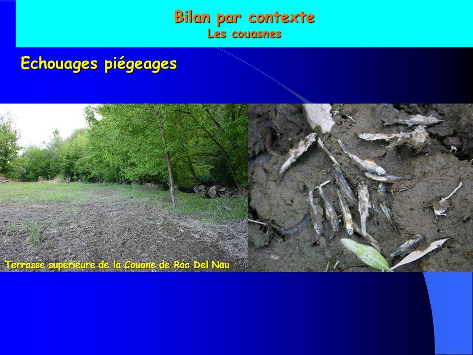 Bilan par contexte Les couasnes Echouages piégeages Terrasse supérieure de la Couane de Roc Del Nau