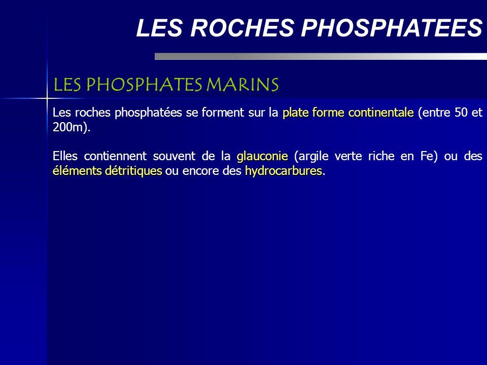LES ROCHES PHOSPHATEES plate forme continentale Les roches phosphatées se forment sur la plate forme continentale (entre 50 et 200m).