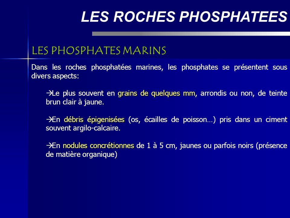 LES ROCHES PHOSPHATEES Dans les roches phosphatées marines, les phosphates se présentent sous divers aspects: grains de quelques mm Le plus souvent en grains de quelques mm, arrondis ou non, de teinte brun clair à jaune.