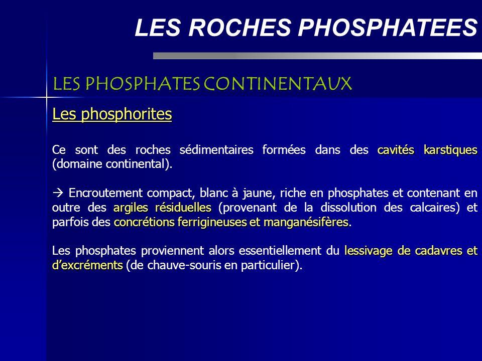 LES ROCHES PHOSPHATEES Les phosphorites cavités karstiques Ce sont des roches sédimentaires formées dans des cavités karstiques (domaine continental).