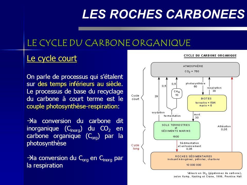 LES ROCHES CARBONEES LE CYCLE DU CARBONE ORGANIQUE Le cycle court des temps inférieurs au siècle couple photosynthèse-respiration On parle de processus qui s étalent sur des temps inférieurs au siècle.