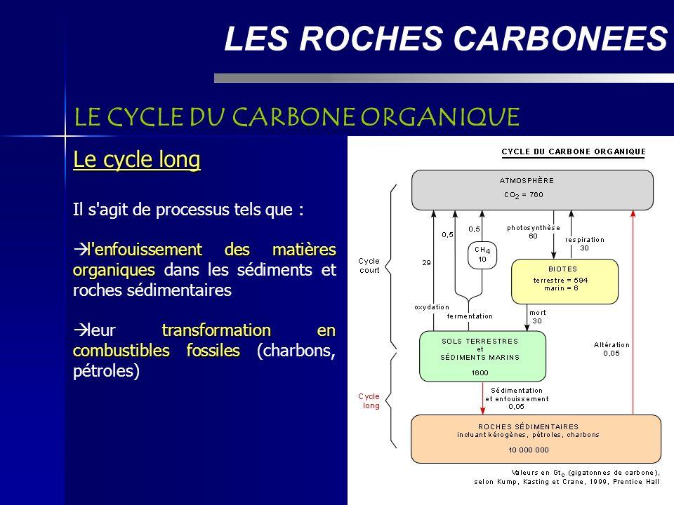 LES ROCHES CARBONEES LE CYCLE DU CARBONE ORGANIQUE Le cycle long Il s agit de processus tels que : l enfouissement des matières organiques l enfouissement des matières organiques dans les sédiments et roches sédimentaires transformation en combustibles fossiles leur transformation en combustibles fossiles (charbons, pétroles)