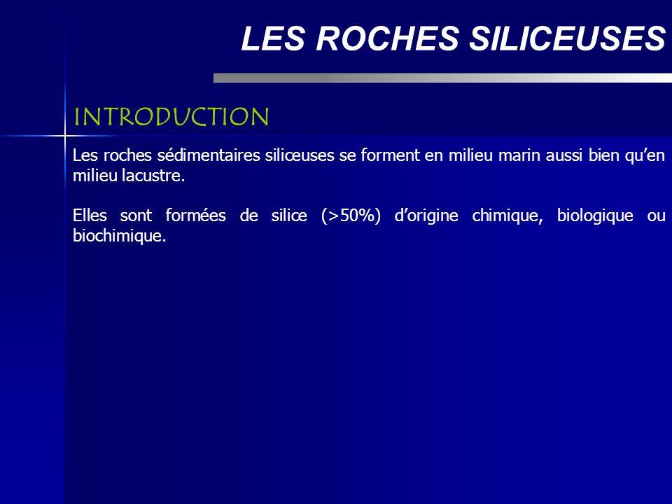 LES ROCHES SILICEUSES Les roches sédimentaires siliceuses se forment en milieu marin aussi bien quen milieu lacustre.