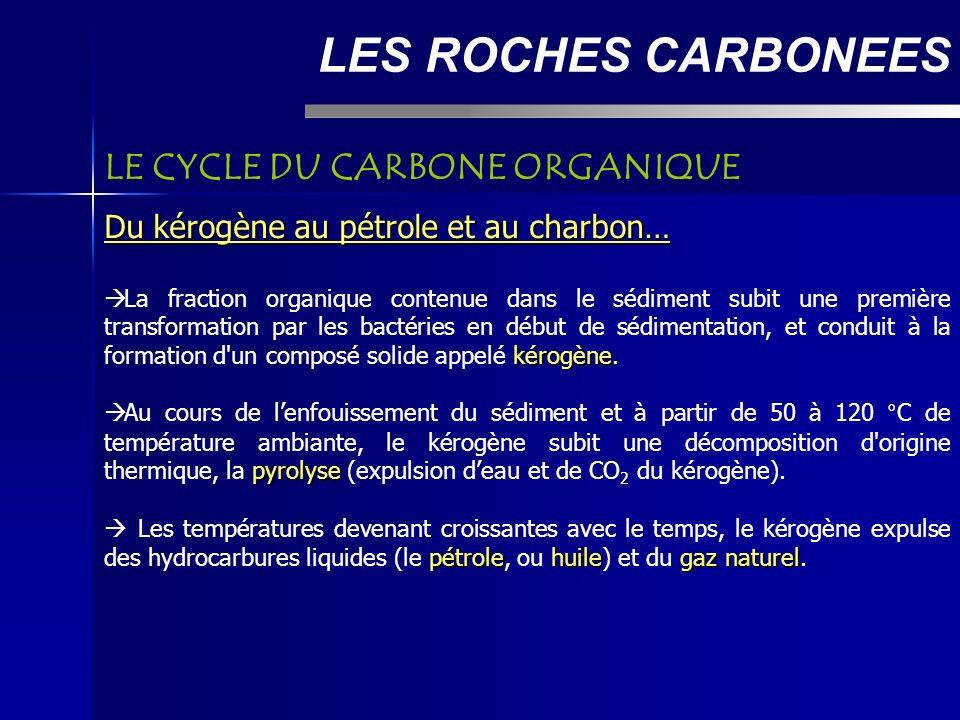 LES ROCHES CARBONEES LE CYCLE DU CARBONE ORGANIQUE Du kérogène au pétrole et au charbon… kérogène La fraction organique contenue dans le sédiment subit une première transformation par les bactéries en début de sédimentation, et conduit à la formation d un composé solide appelé kérogène.