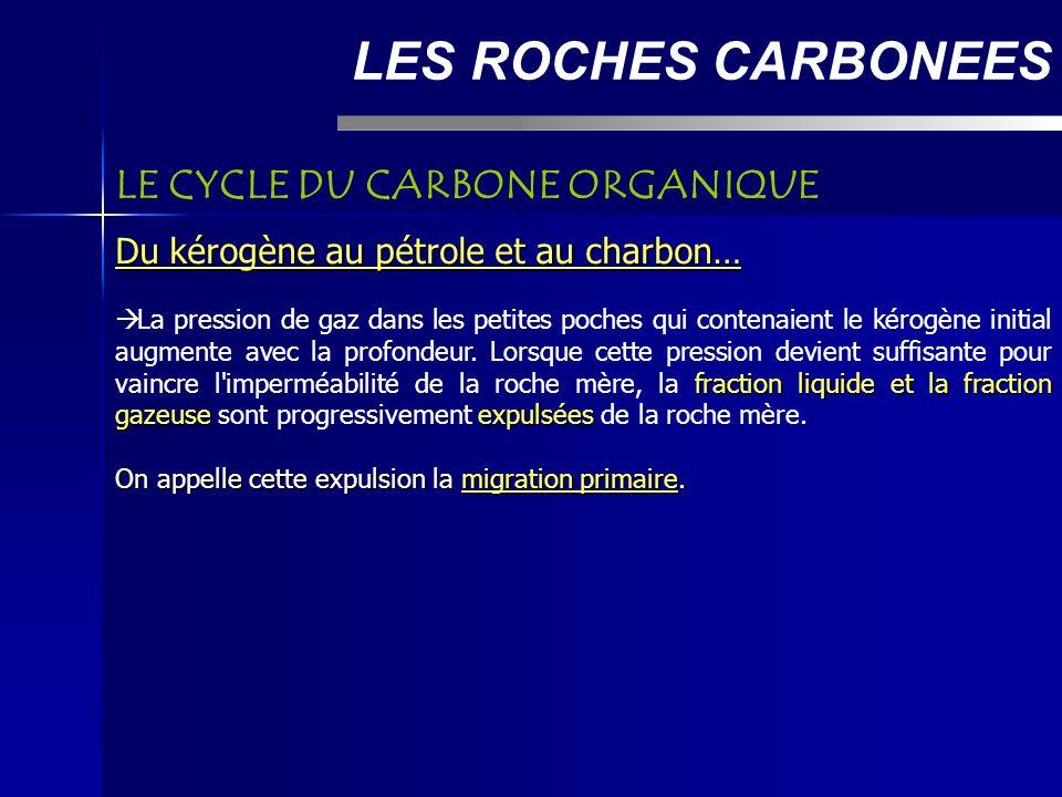 LES ROCHES CARBONEES LE CYCLE DU CARBONE ORGANIQUE Du kérogène au pétrole et au charbon… fraction liquide et la fraction gazeuseexpulsées La pression de gaz dans les petites poches qui contenaient le kérogène initial augmente avec la profondeur.