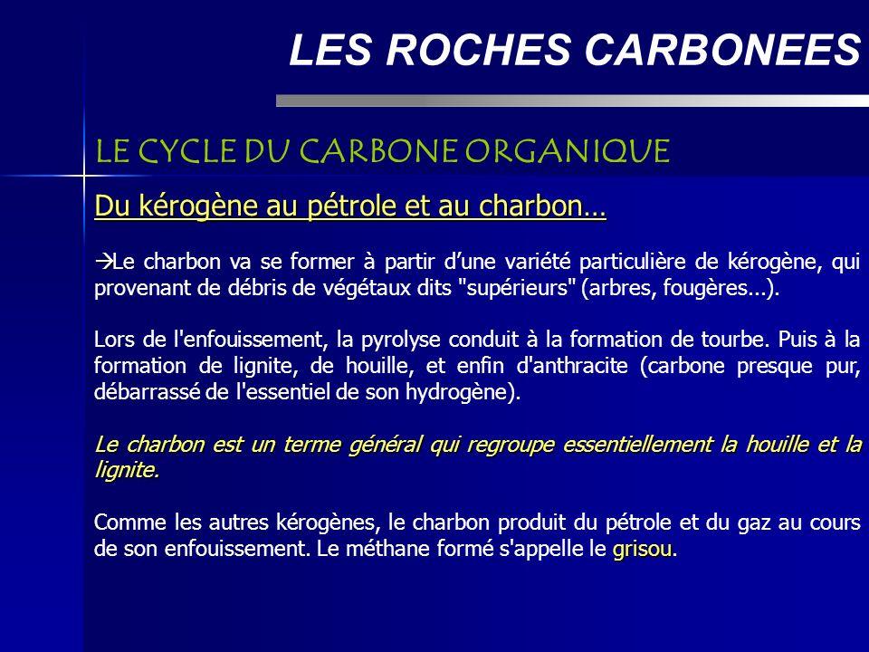 LES ROCHES CARBONEES LE CYCLE DU CARBONE ORGANIQUE Du kérogène au pétrole et au charbon… Le charbon va se former à partir dune variété particulière de kérogène, qui provenant de débris de végétaux dits supérieurs (arbres, fougères...).