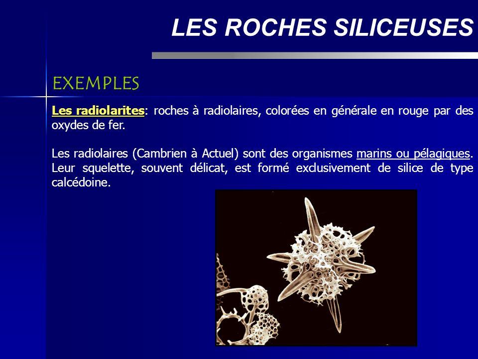 LES ROCHES SILICEUSES Les radiolarites Les radiolarites: roches à radiolaires, colorées en générale en rouge par des oxydes de fer.