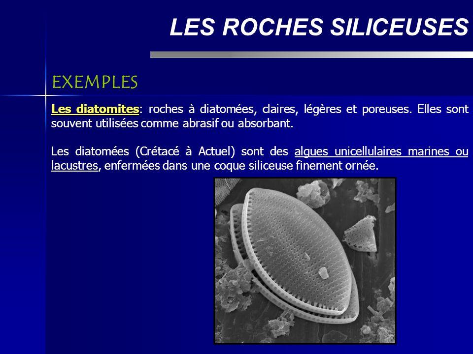 LES ROCHES SILICEUSES Les diatomites Les diatomites: roches à diatomées, claires, légères et poreuses.