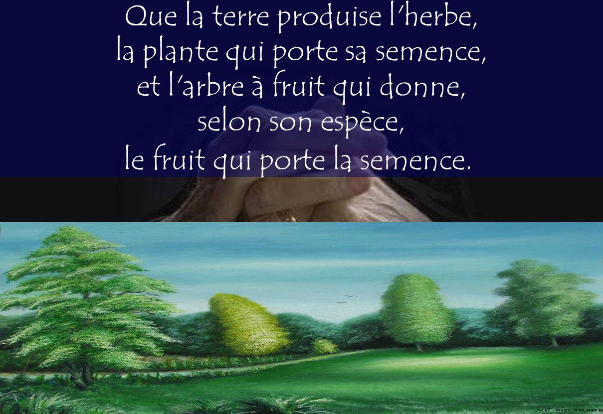 Que la terre produise l'herbe, la plante qui porte sa semence, et l'arbre à fruit qui donne, selon son espèce, le fruit qui porte la semence.