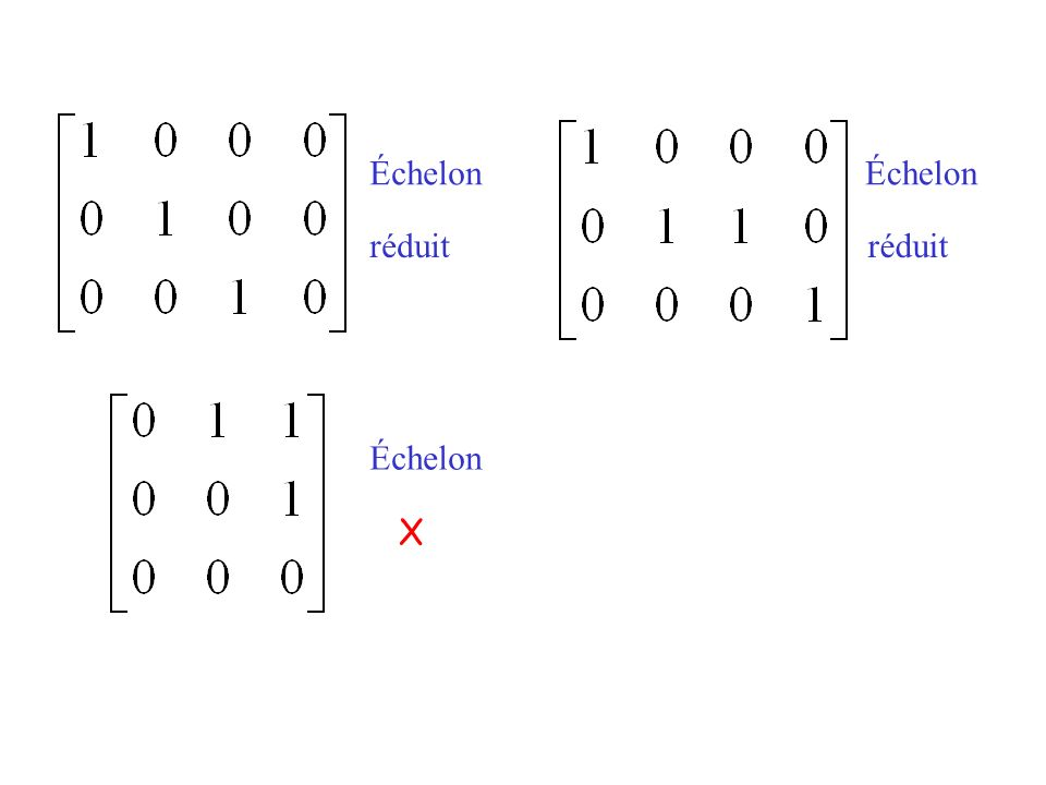 Échelon X
