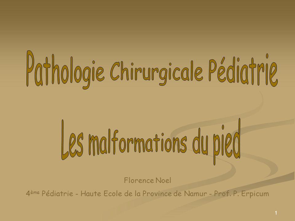 1 Florence Noel 4 ème Pédiatrie - Haute Ecole de la Province de Namur - Prof. P. Erpicum
