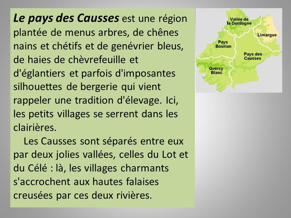Au nord de la région Midi Pyrénées, se trouve le beau département boisé du Lot aux contreforts du Massif Central. Cinq micro pays le composent : le Pa