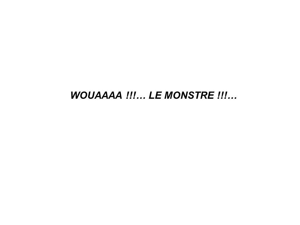 WOUAAAA !!!… LE MONSTRE !!!…