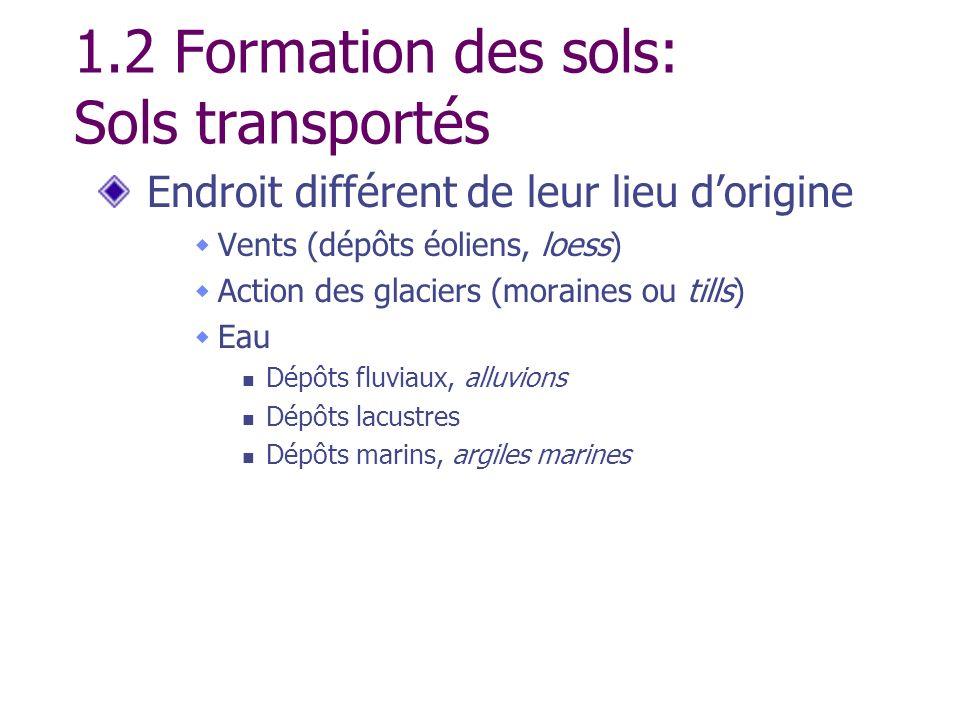 1.2 Formation des sols: Sols transportés Endroit différent de leur lieu dorigine Vents (dépôts éoliens, loess) Action des glaciers (moraines ou tills)