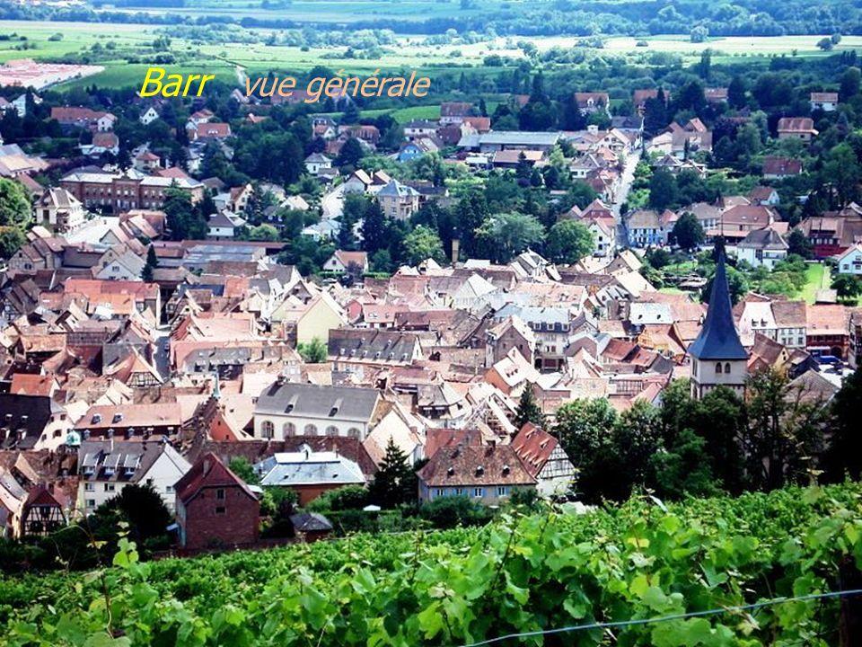 Andlau le village, vue générale