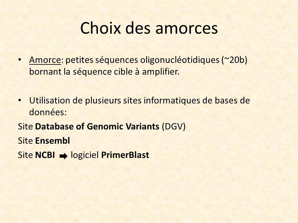 Choix des amorces Amorce: petites séquences oligonucléotidiques (~20b) bornant la séquence cible à amplifier. Utilisation de plusieurs sites informati