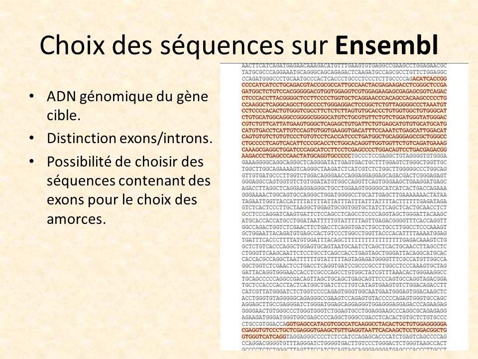 Choix des séquences sur Ensembl ADN génomique du gène cible. Distinction exons/introns. Possibilité de choisir des séquences contenant des exons pour