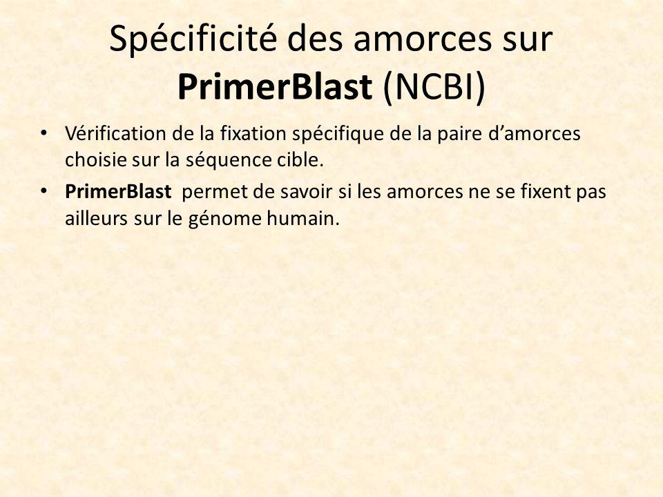 Spécificité des amorces sur PrimerBlast (NCBI) Vérification de la fixation spécifique de la paire damorces choisie sur la séquence cible. PrimerBlast