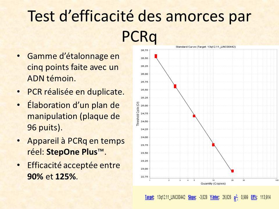 Test defficacité des amorces par PCRq Gamme détalonnage en cinq points faite avec un ADN témoin. PCR réalisée en duplicate. Élaboration dun plan de ma