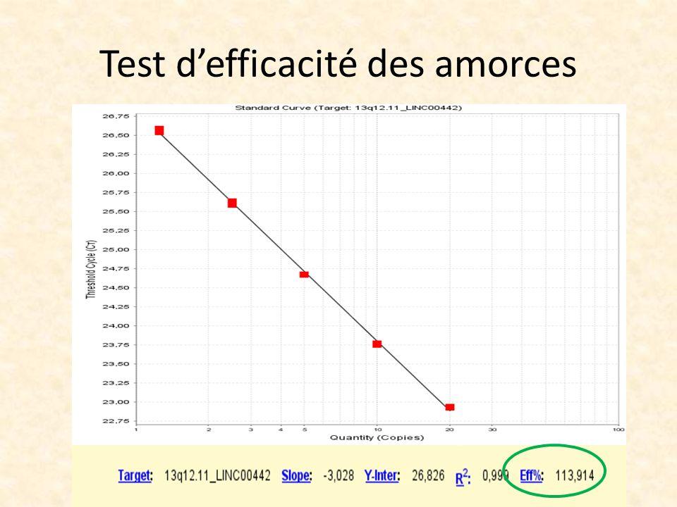 Test defficacité des amorces