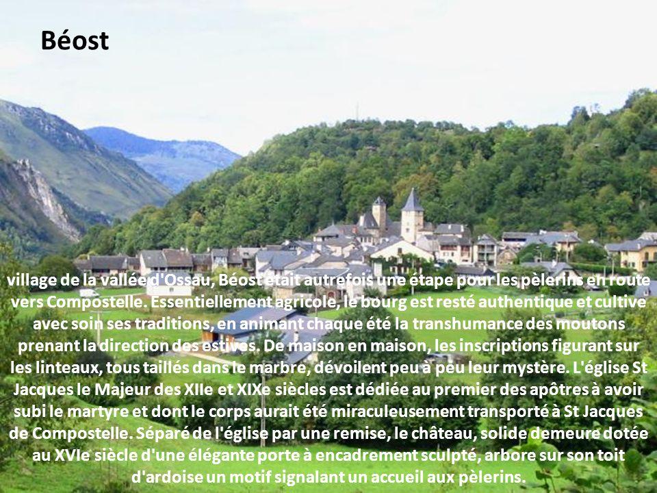 ce village fut longtemps la capitale de la vallée d'Aspe. Situé sur la Berthe, au confluent de celle-ci avec le gave d'Aspe, en un lieu où les rives d