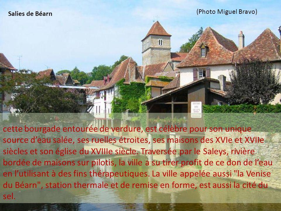 cette bourgade entourée de verdure, est célèbre pour son unique source deau salée, ses ruelles étroites, ses maisons des XVIe et XVIIe siècles et son église du XVIIIe siècle.