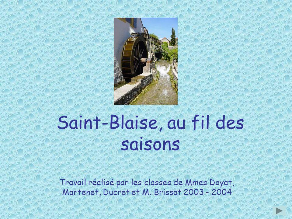 Saint-Blaise, au fil des saisons Travail réalisé par les classes de Mmes Doyat, Martenet, Ducret et M. Brissat 2003 - 2004