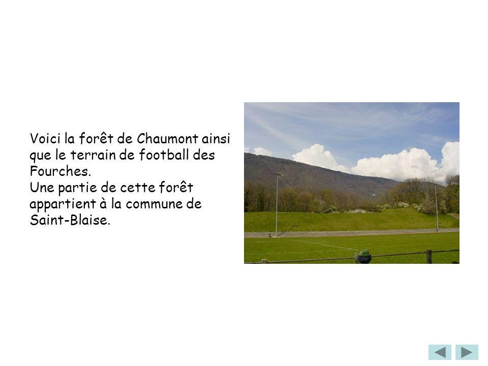 Voici la forêt de Chaumont ainsi que le terrain de football des Fourches. Une partie de cette forêt appartient à la commune de Saint-Blaise.