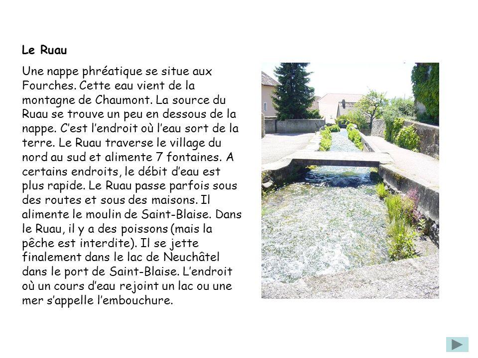 Le Ruau Une nappe phréatique se situe aux Fourches. Cette eau vient de la montagne de Chaumont. La source du Ruau se trouve un peu en dessous de la na