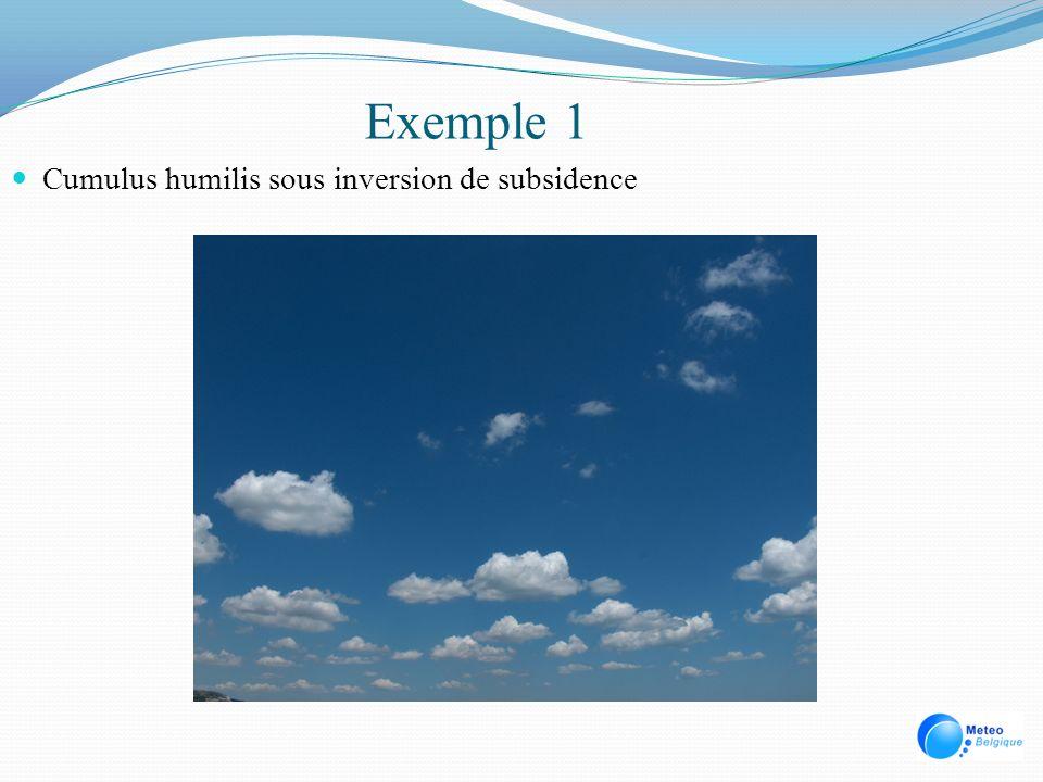 Exemple 1 Cumulus humilis sous inversion de subsidence
