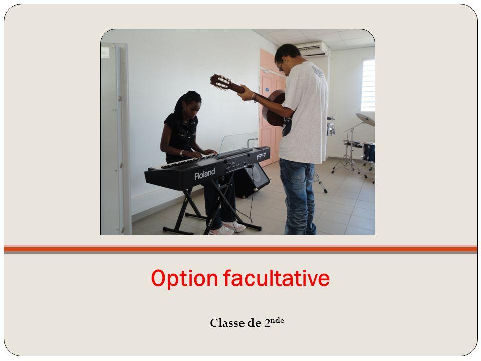 Option facultative Classe de 2 nde