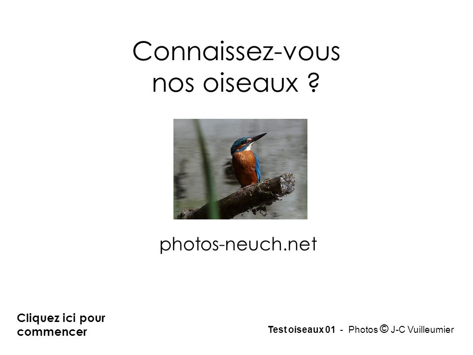 Cliquez ici pour commencer photos-neuch.net Test oiseaux 01 - Photos © J-C Vuilleumier Connaissez-vous nos oiseaux ?