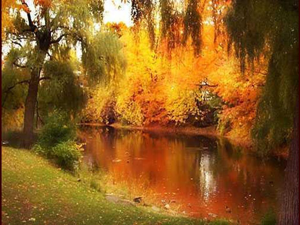 Chanson d'automne Les sanglots longs Des violons De l'automne Blessent mon cœur D'une langueur Monotone. Tout suffocant Et blême, quand Sonne l'heure
