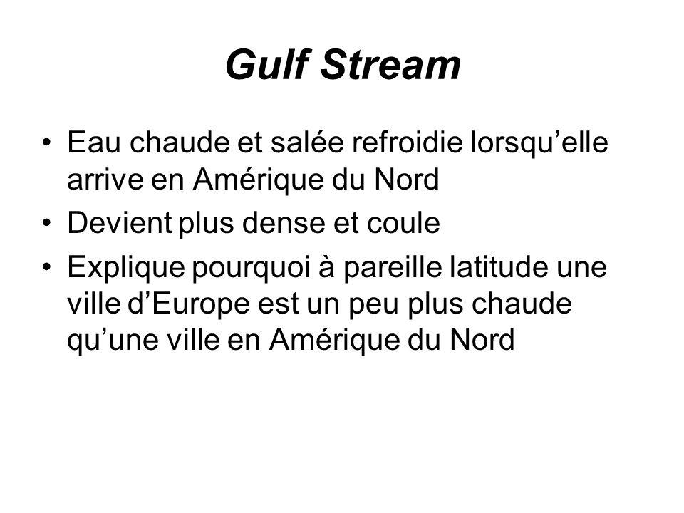 Gulf Stream Eau chaude et salée refroidie lorsquelle arrive en Amérique du Nord Devient plus dense et coule Explique pourquoi à pareille latitude une ville dEurope est un peu plus chaude quune ville en Amérique du Nord