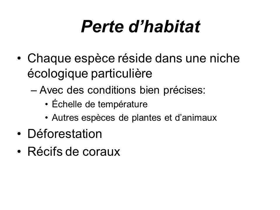 Perte dhabitat Chaque espèce réside dans une niche écologique particulière –Avec des conditions bien précises: Échelle de température Autres espèces de plantes et danimaux Déforestation Récifs de coraux