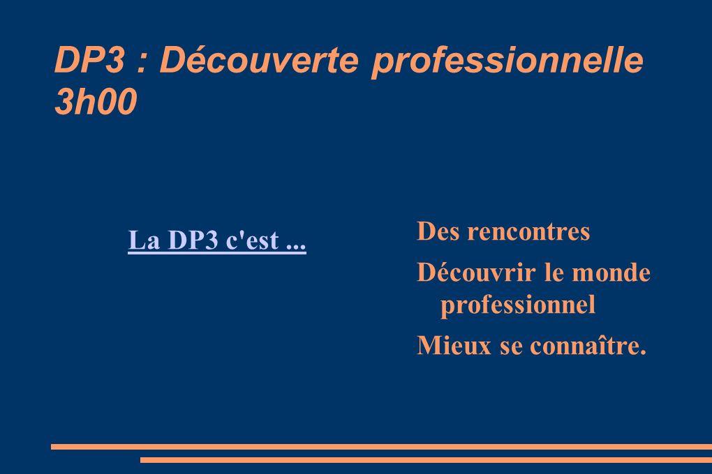 DP3 : Découverte professionnelle 3h00 La DP3 c'est... Des rencontres Découvrir le monde professionnel Mieux se connaître.
