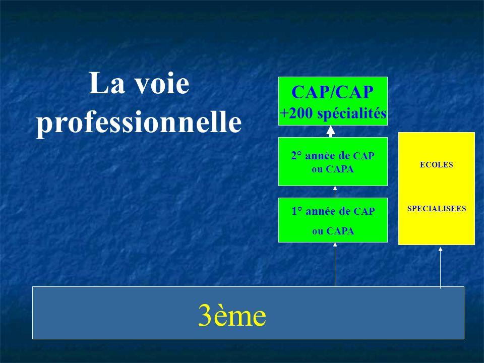 ECOLES SPECIALISEES 2° année de CAP ou CAPA 1° année de CAP ou CAPA CAP/CAP +200 spécialités La voie professionnelle 3ème