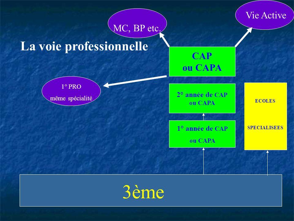 ECOLES SPECIALISEES 2° année de CAP ou CAPA 1° année de CAP ou CAPA Vie Active MC, BP etc. 1° PRO même spécialité CAP ou CAPA La voie professionnelle