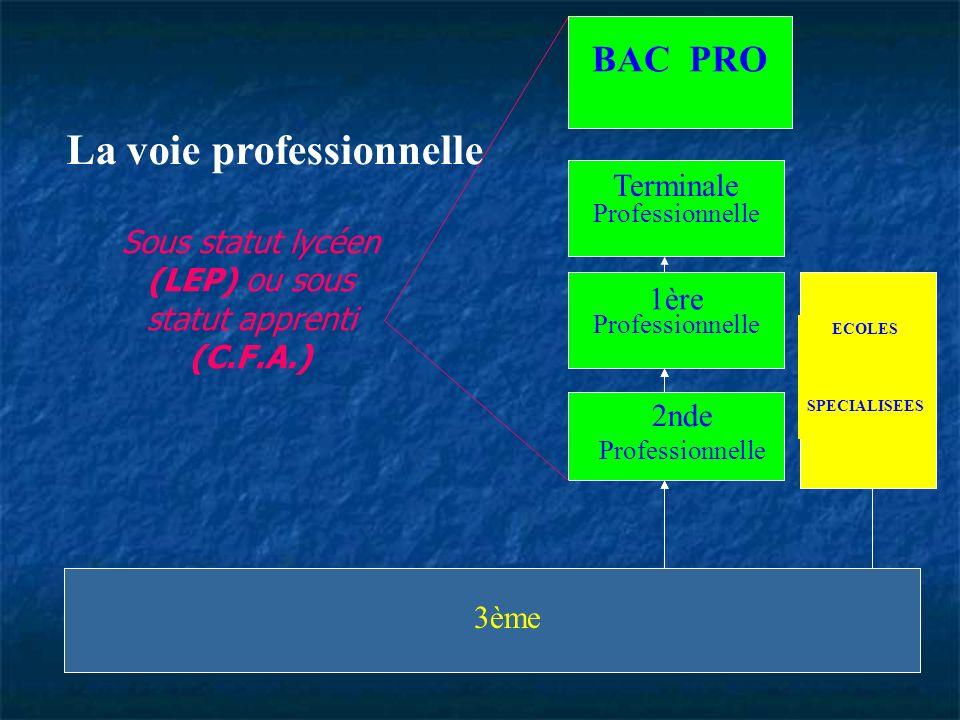3ème ECOLES SPECIALISEES Admission sur concours Terminale de C.A.P. ou B.E.. 2 nde Professionnelle pour C.A.P. ou B.E.P. 3ème ECOLES SPECIALISEES Admi