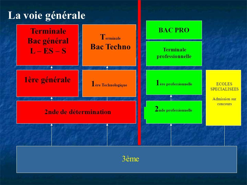3ème ECOLES SPECIALISEES Admission sur concours 1 ère professionnelle 2 nde professionnelle 1 ère Technologique 2nde de détermination T erminale Bac T