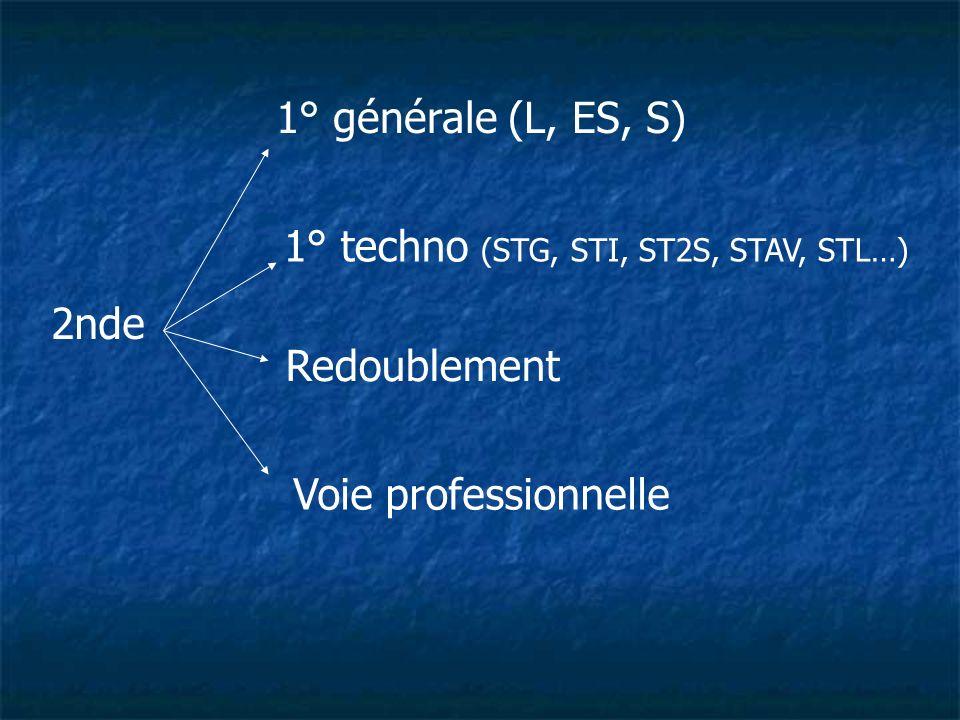 2nde 1° générale (L, ES, S) 1° techno (STG, STI, ST2S, STAV, STL…) Redoublement Voie professionnelle