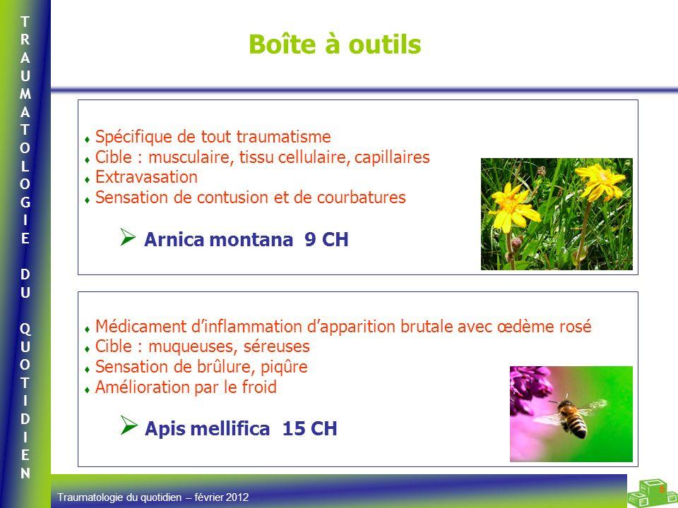 TRAUMATOLOGIEDUQUOTIDIENTRAUMATOLOGIEDUQUOTIDIEN Traumatologie du quotidien – février 2012 6 Boîte à outils Médicament dinflammation dapparition bruta