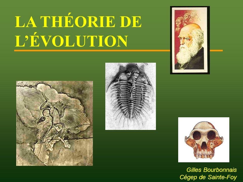 Étude des fossiles au XVIII e et XIX e siècle: Catastrophisme (Terre jeune): Changements dans les strates dus à de grandes catastrophes géologiques.